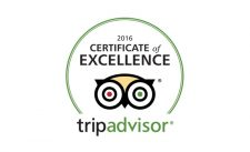 Certificate Of Excellence - Downsfield Carbis Bay Bed & Breakfast